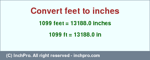 1099 Ft In Inches Convert Feet
